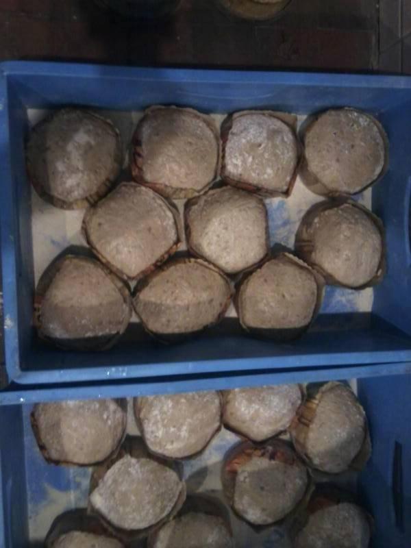 Das Brot kurz vor dem Abbacken